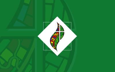 O Sínodo Pan-Amazônico: desafios e esperanças